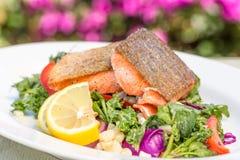 Зажаренное в духовке Salmon блюдо Стоковые Фото