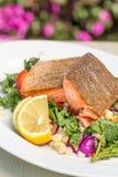 Зажаренное в духовке Salmon блюдо Стоковые Изображения