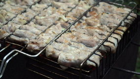 Зажаренное мясо на пламенеющем гриле сток-видео