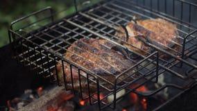 Зажаренное мясо на пламенеющем гриле акции видеоматериалы