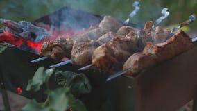 Зажаренное мясо над braizer на природе видеоматериал