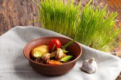 Зажаренное мясо с овощами в плите Стоковые Фото