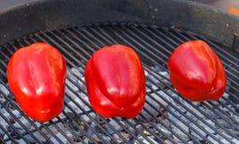 Зажаренное paprica на решетке стоковая фотография rf