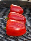 Зажаренное paprica на решетке tne стоковое изображение rf