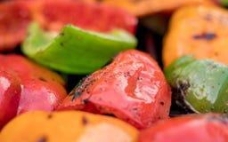 Зажаренные болгарские перцы красного цвета, оранжевых и зеленых закалённые, сгоренные и Стоковые Фотографии RF