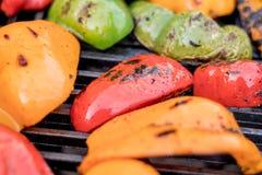 Зажаренные болгарские перцы красного цвета, оранжевых и зеленых закалённые, сгоренные и Стоковые Фото
