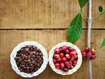 Зажаренные в духовке и красные кофейные зерна стоковое изображение