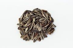 Зажаренные в духовке семена подсолнуха на белой предпосылке стоковые фотографии rf