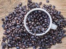 Зажаренные в духовке кофейные зерна в кофейной чашке Стоковое Фото