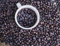 Зажаренные в духовке кофейные зерна в кофейной чашке Стоковые Фото