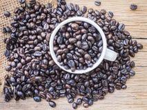 Зажаренные в духовке кофейные зерна в кофейной чашке Стоковое фото RF