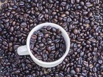 Зажаренные в духовке кофейные зерна в кофейной чашке Стоковая Фотография