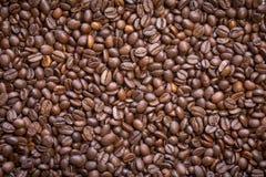 Зажаренные в духовке кофейные зерна, можно использовать как предпосылка Стоковое Изображение