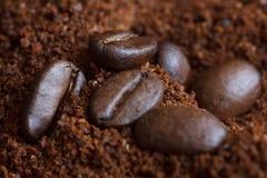 Зажаренные в духовке кофейные зерна на земном кофе Стоковое Фото