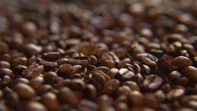 Зажаренные в духовке кофейные зерна, право акции видеоматериалы