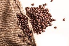Зажаренные в духовке кофейные зерна Стоковая Фотография