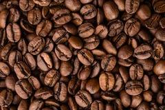 Зажаренные в духовке кофейные зерна Стоковое Изображение