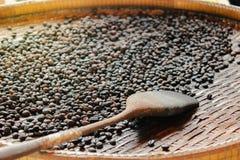 Зажаренные в духовке robusta кофейные зерна и деревянный флиппер в молотя корзине стоковые изображения rf