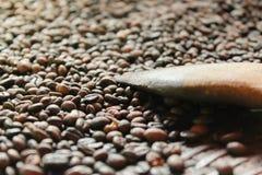Зажаренные в духовке robusta кофейные зерна и деревянный флиппер в молотя корзине стоковое изображение rf