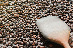 Зажаренные в духовке robusta кофейные зерна и деревянный флиппер в молотя корзине стоковое фото rf