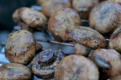 Зажаренные грибы Стоковое фото RF
