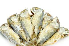 Зажаренные изолированные fishs Стоковые Изображения RF