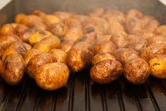 Зажаренные картошки Стоковые Изображения