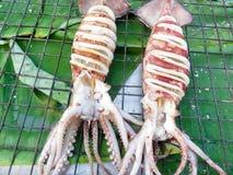 Зажаренные кальмары Стоковые Фото