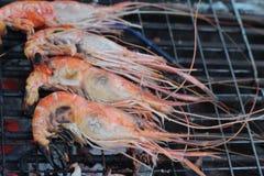 Зажаренные креветки на плите очень вкусный стоковое фото rf