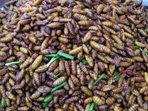 зажаренные насекомые стоковое фото
