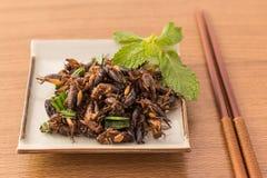 зажаренные насекомые Стоковые Фото