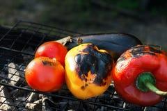 Зажаренные овощи - красные и желтые перец, баклажан и томат Стоковые Изображения RF