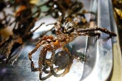 Зажаренные пауки Стоковые Фото