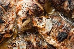 Зажаренные рыбы, карп Стоковое Изображение RF