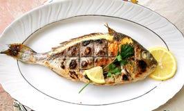 Зажаренные рыбы, лещ моря, dorada на плите стоковое фото
