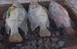 Зажаренные рыбы соли еды пресноводной рыбы Стоковые Изображения RF