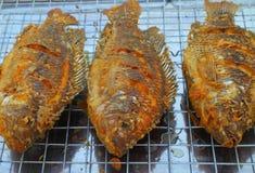 Зажаренные рыбы тилапии Стоковые Изображения RF