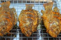 Зажаренные рыбы тилапии Стоковые Изображения