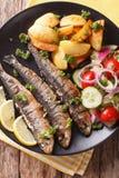 Зажаренные сардины с зажаренными в духовке картошками и свежим крупным планом салата Ve Стоковое Изображение