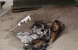 Зажаренные сардины, espetos Стоковые Изображения