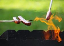Зажаренные сосиски outdoors Стоковые Фото