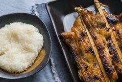 Зажаренный азиат цыпленка Стоковая Фотография