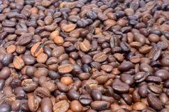 Зажаренный в духовке кофе различной предпосылки фасолей вида Стоковое фото RF