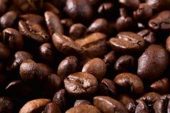 зажаренный в духовке кофе фасолей предпосылки Стоковое Изображение