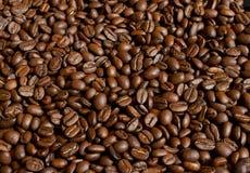 зажаренный в духовке кофе фасолей Стоковые Изображения RF