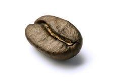 зажаренный в духовке кофе фасоли Стоковые Изображения