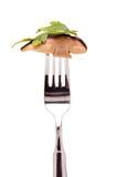 Зажаренный в духовке подосиновик shrooms с петрушкой Стоковая Фотография