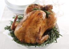 зажаренный в духовке цыпленок стоковые фотографии rf