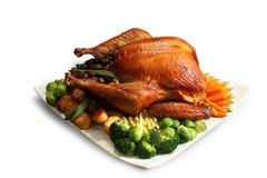 зажаренный в духовке цыпленок Стоковые Изображения