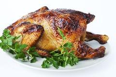 зажаренный в духовке цыпленок Стоковая Фотография